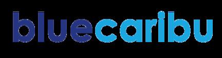 Logo Blue CRM